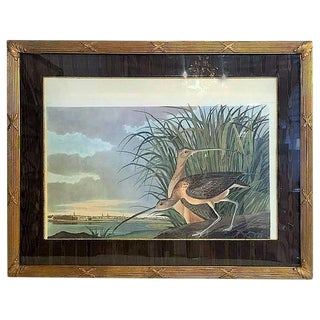 """Long-Billed Curlew""Bird Print"