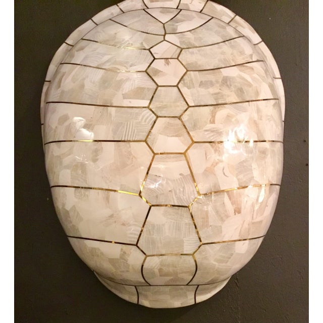 Mainland-Smith Modern White Turtle Shell Wall Sculpture