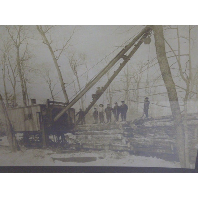Boyne City, Michigan Logging Photography - Image 4 of 7