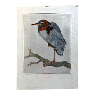 Benjamin B. Moore Signed Hand Painted Etching of Goliath Heron For Sale