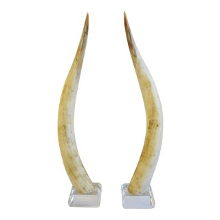Midcentury Mounted Horns on Lucite Bases - Pair