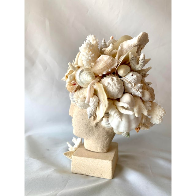 Stone Hygiea Shell Encrusted Head For Sale - Image 7 of 9
