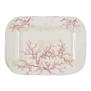 Cherry Blossom English Transferware Platter For Sale