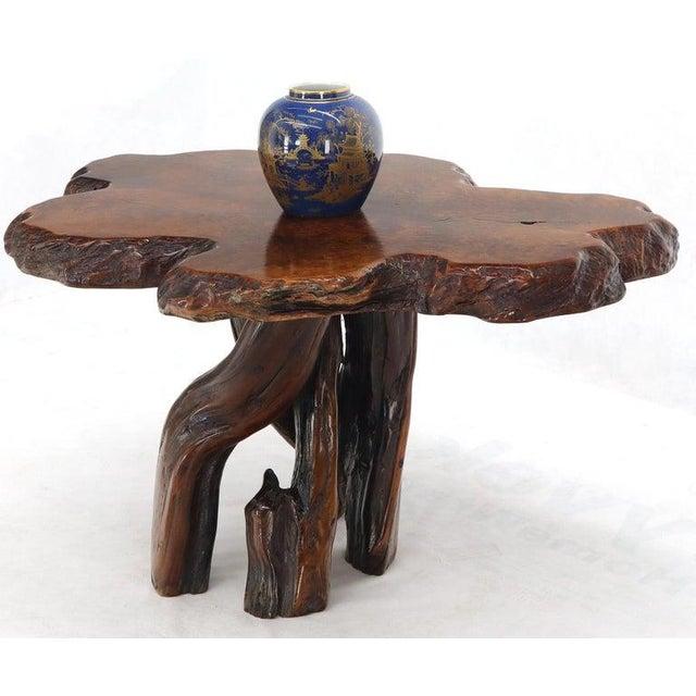 Gorgeous amber tone vivid pattern burl wood natural top center table guerdon.