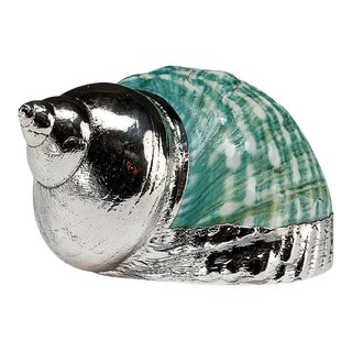 Partially Silvered Sea Shell Turbo Green and White For Sale