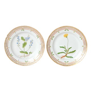 Pair of Flora Danica Plates by Royal Copenhagen #20/3573 and #20/3549 For Sale