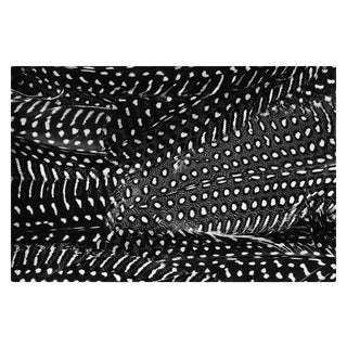 "Contemporary ""Plumes No. 2"" Black and White Abstract Feather Print - 20"" X 30"" For Sale"