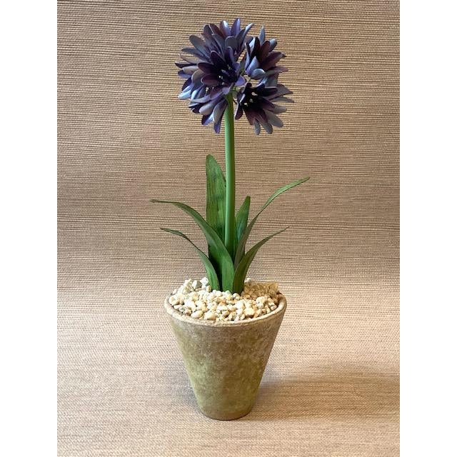 2000 - 2009 Tommy Mitchell Agapanthus Handmade Tole Potted Plant For Sale - Image 5 of 5