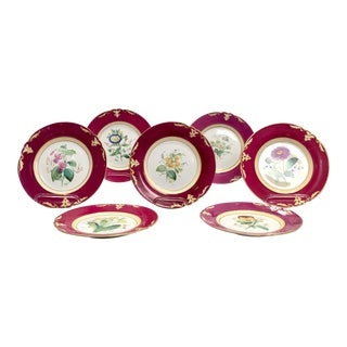 Copeland Botanical Plates, England Circa 1820 - Set of 7 For Sale