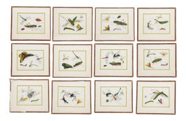 Image of Newly Made Chinese Paintings