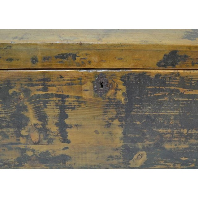 Pine Pine Painted Dome-Top Trunk For Sale - Image 7 of 10