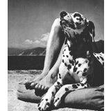 "Image of Herbert List ""Master and Dog"" Italy. Liguria. Portofino Vintage Sheet-Fed Gravure, 1936 For Sale"