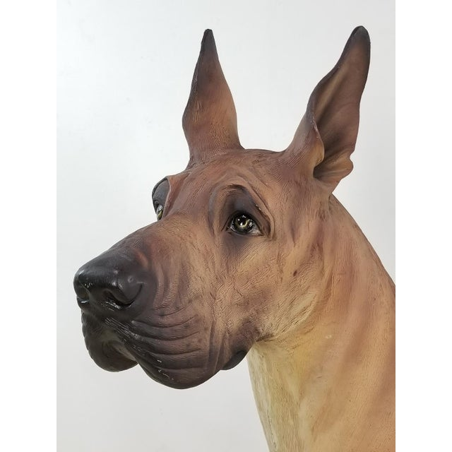 Great Dane Life Size Dog Statue For Sale In Los Angeles - Image 6 of 11