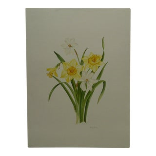 """Original """"Narcissus Mix"""" Painting on Paper by Kathy Watkins"""