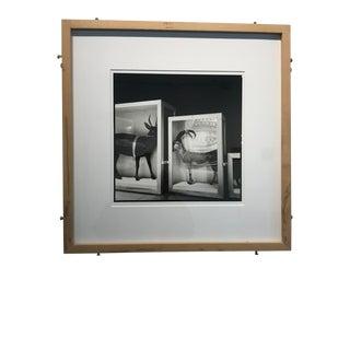 Contemporary Fine Art Photography by Pauline Kochanski For Sale