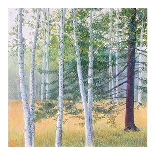 """Elissa Gore """"Birch Field 2"""" For Sale"""