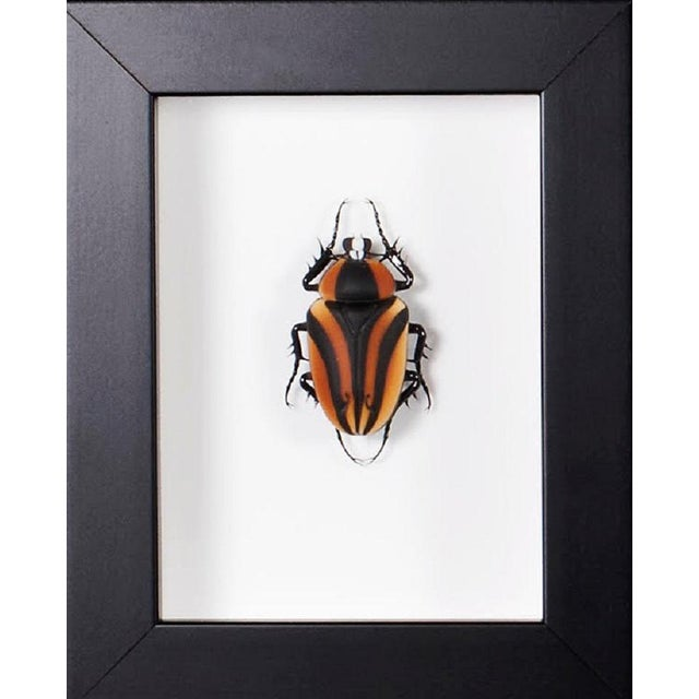 Glass Beetle in Murano Glass by Toffolo For Sale - Image 7 of 7