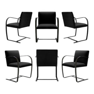 Brno Flat-Bar Chairs in Noir Velvet, Obsidian Gloss Frame - Set of 6 For Sale