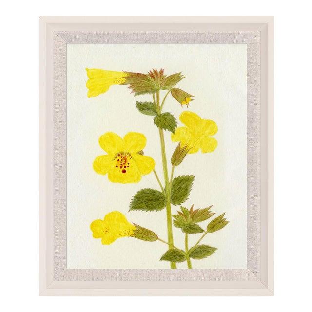 Hubbard Flower, Small: 2912 Artwork, Framed Artwork For Sale