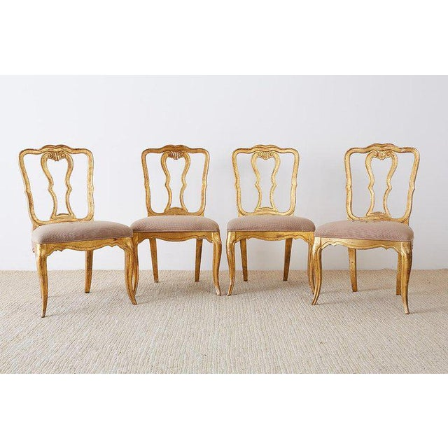 Italian Set of Four Italian Giltwood Venetian Style Dining Chairs For Sale - Image 3 of 13