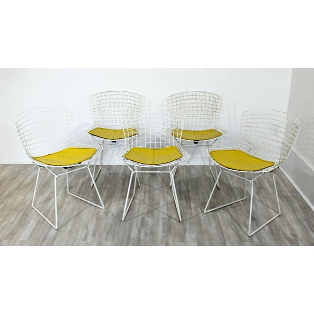 Contemporary Modern Harry Bertoia for Knoll Set 5 Side Dining Chairs 1980 Yellow For Sale In Detroit - Image 6 of 11