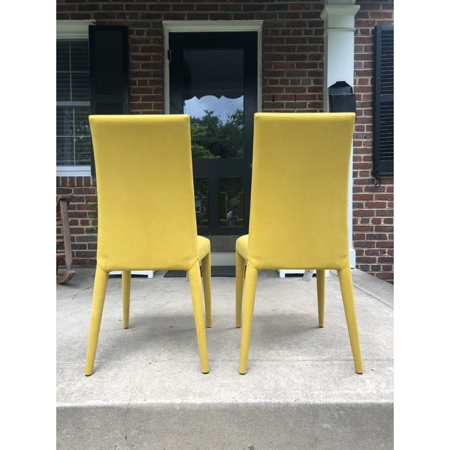 Contemporary Mustard Yellow Anais Chairs by Calligaris - a Pair For Sale - Image 3 of 7