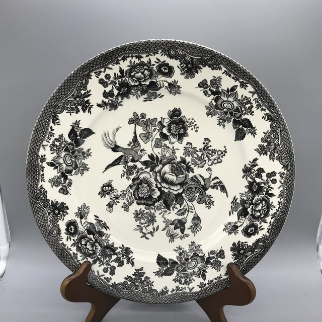 Black Royal Stafford Asiatic Pheasant Black Chop Plates - Set of 5 For Sale - Image 8 of 13