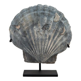 Mounted Fossilized Blue-Grey Pecten Shell For Sale