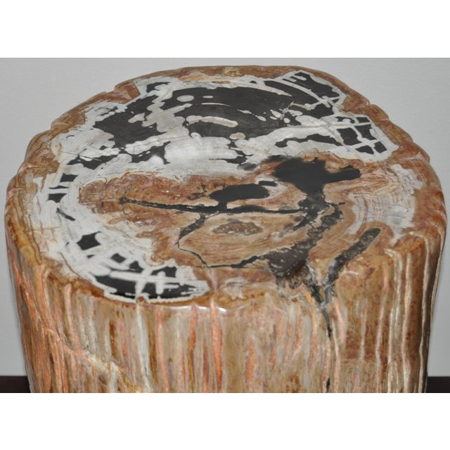 Modern Ancient Petrified Wood Side Table For Sale - Image 3 of 7