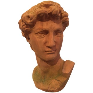 Classic Italian Terracotta Bust of David For Sale