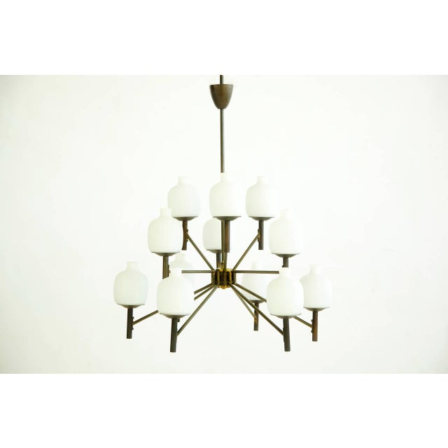 12 shade chandelier. Frosted glass sculpted shades with articulating arms with bronze finish. Label to inside of canopy...