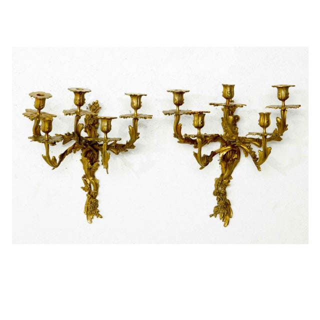 Late 19th Century Louis XV Style Five Branch Rocaille Wall Lights - a Pair For Sale - Image 5 of 5