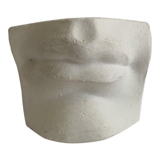 Vintage Cast Plaster David's Mouth Artist Study Model For Sale