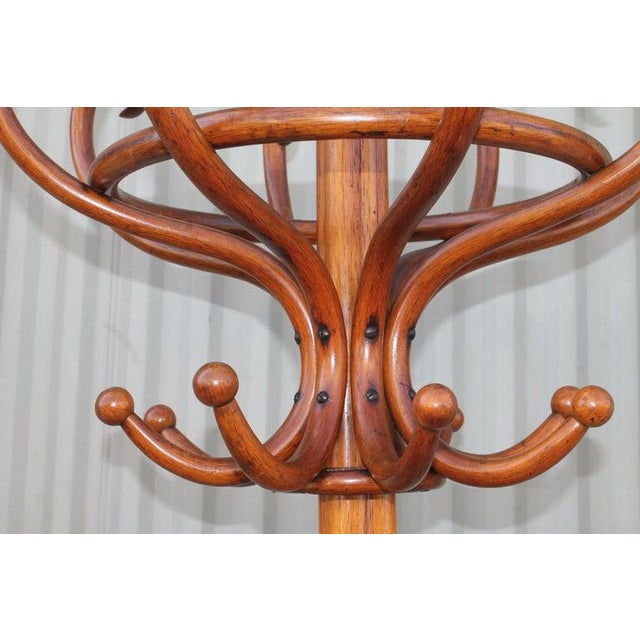 Rustic 19th Century Bentwood Hat and Coat Stand For Sale - Image 3 of 6