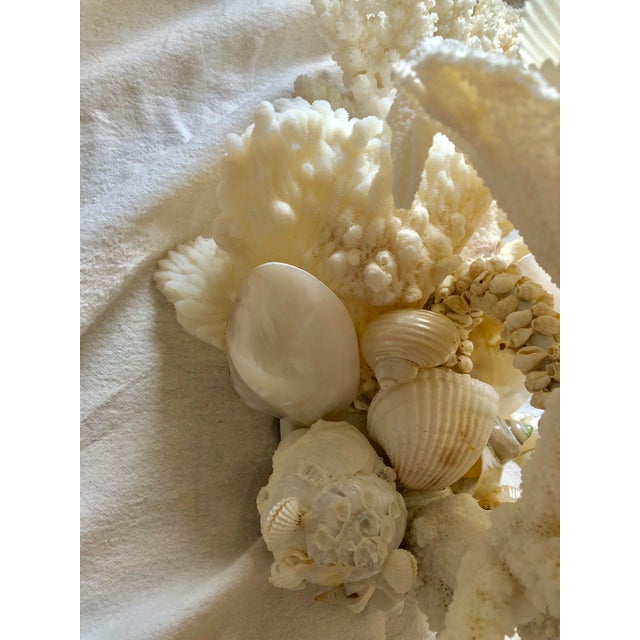 Coral Organic Modern Christa's South Seashells One-Light Coral Sconces - a Pair For Sale - Image 7 of 12