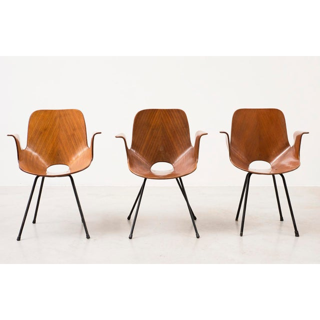Set of Three Medea Armchairs by Vittorio Nobili, Italy, 1950s For Sale - Image 11 of 11