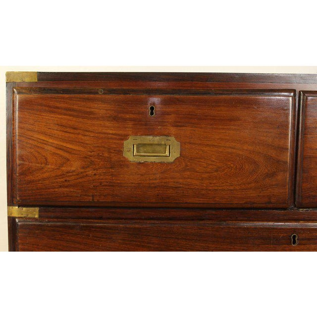 English Rosewood Campaign Chest of Drawers For Sale - Image 11 of 13