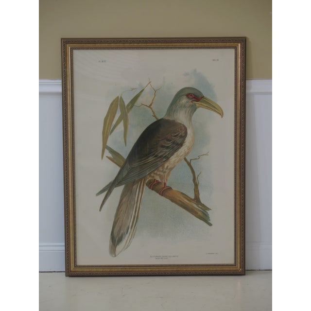 Drawing/Sketching Materials 1990s Vintage Custom Framed Channel Bill Bird Print For Sale - Image 7 of 7
