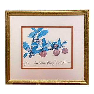 Original & Signed Vintage Art MIX West Indian Cherry Lithograph & Gilded Frame For Sale