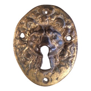 18th Century Gilt Bronze Lion Escutcheon For Sale