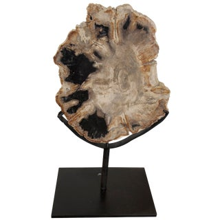 "Wood Fossil With Stand, 10"" For Sale"