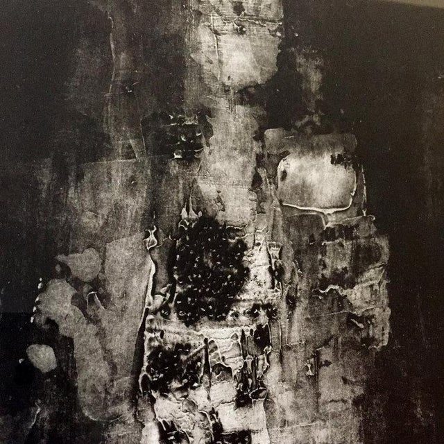 Abstract Dolores Tema, Fractured Plates Print, 2014 For Sale - Image 3 of 7