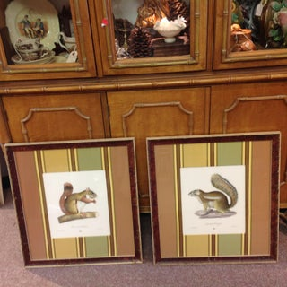 English Hand-Colored Lithographs of Squirrels in Custom Frame and Matte - A Pair Preview