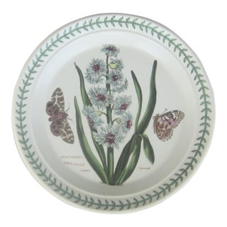 "Vintage English Portmeirion ""The Botanic Garden"" Plate For Sale"