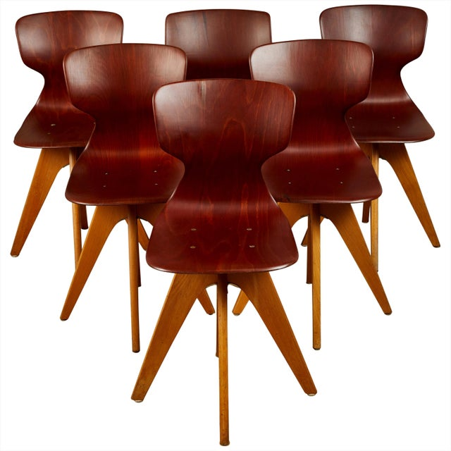 Mid-Century German School Chairs - Set of 6 For Sale - Image 13 of 13