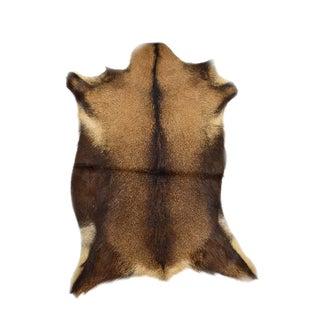 """Handmade Goat Skin Pelt - 2'2"""" x 3'0"""""""