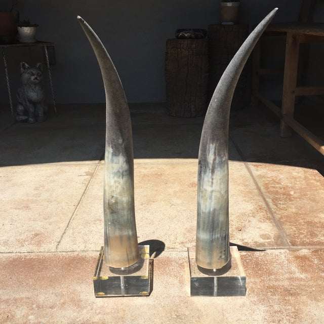 African Vintage Tusk/Horn Decorations- A Pair For Sale - Image 3 of 5