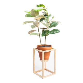 Trey Jones Studio Tall Frame Planter For Sale