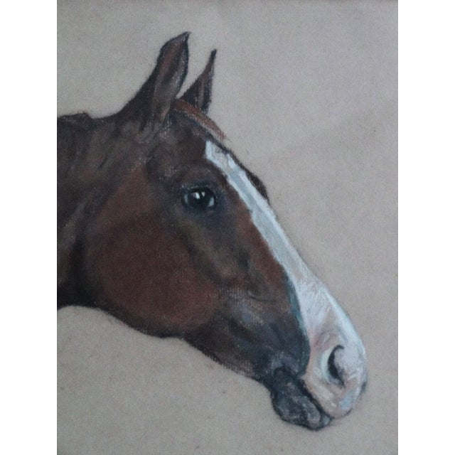 Equestrian Race Horse Portrait Drawing - Image 5 of 8