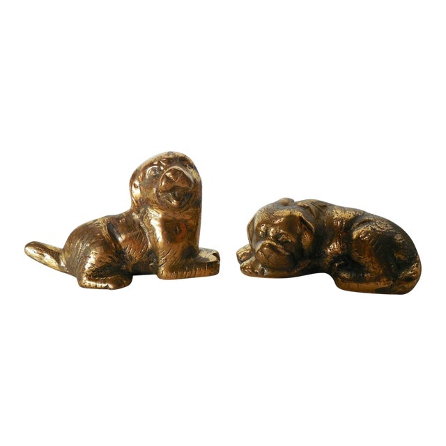 Petite Brass Pups - A Pair - Image 1 of 7